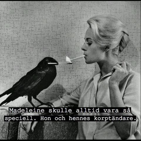 #korp #fågel #röka #tända #cigg #cigarett #Madeleine #tjej #brud #kvinna #tändsticka #speciell #humor #blond #ironi #skoj #kul #fånigt #löjligt #poesi #posör #text #foto
