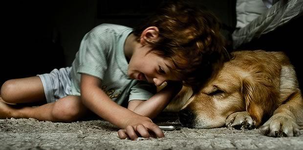 Cette éducatrice canine vous donne ses conseils pour choisir votre chien et l'éduquer correctement sans user de la force ou devenir son «chef de meute » !