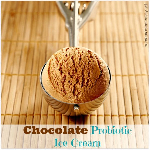 Chocolate Probiotic Ice Cream via Homemade Mommy