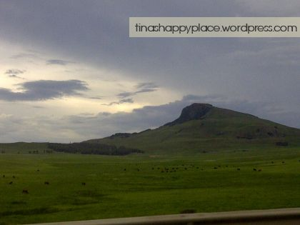Beautiful scenic hills on the road to Wyford Farm