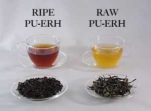 Tea Mastery - Overview • History of Tea • Types of Tea • Definition of Pu-erh • Brewing • Glossary
