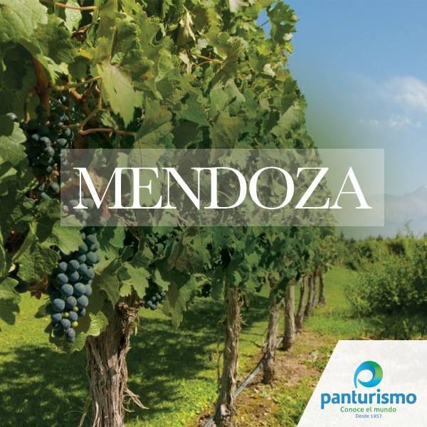 Sabías que Mendoza es considerada la capital mundial de vino por su gran diversidad de suelos, clima, y altitud, mostrando de esta manera, vinos jóvenes y frutales, hasta productos con gran potencialidad de guarda, concentración de fruta y aromas