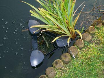 Skimmer dans une piscine naturelle