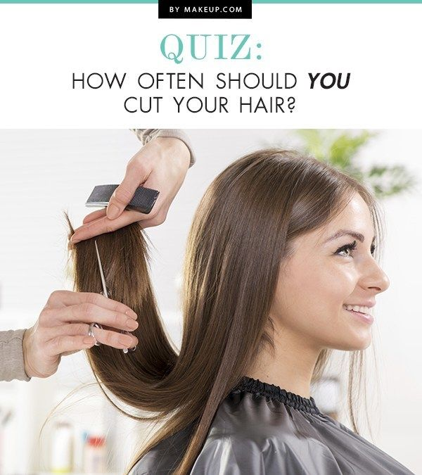 what style hair should i have quiz how often should you cut your hair quizes your 7332 | 083d2f459a6e5b1dae7855ceb79a2e1f