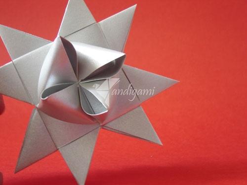 estrella froebel