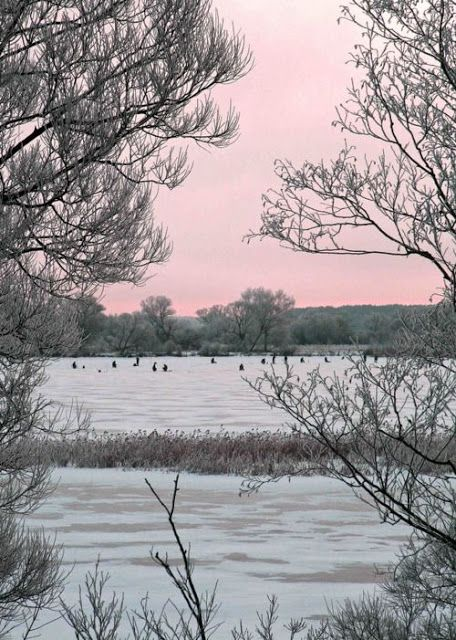 Happy Weekend: Images of Inspiration in Pink And Grey