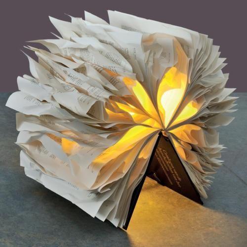 WANT. i must make this!Diy Ideas, Lit Book, Book Art, Trav'Lin Lights, Design Ideas, Art Ideas, Well Lit, Book Lights, Refab Diaries