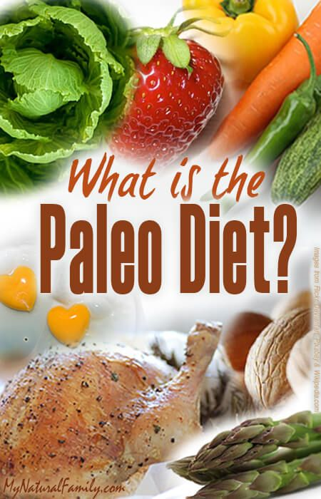 """Many people ask the question: What is the Paleo Diet? The Paleo Diet is pretty simple. It comes from the paleolithic era when cavemen were hunting and gathering their foods. This diet is also called the """"Hunter-Gatherer Diet"""", the """"Caveman Diet""""and the """"Stone Age Diet"""".Man from the paleolithic era would eat meats they hunted andContinue"""