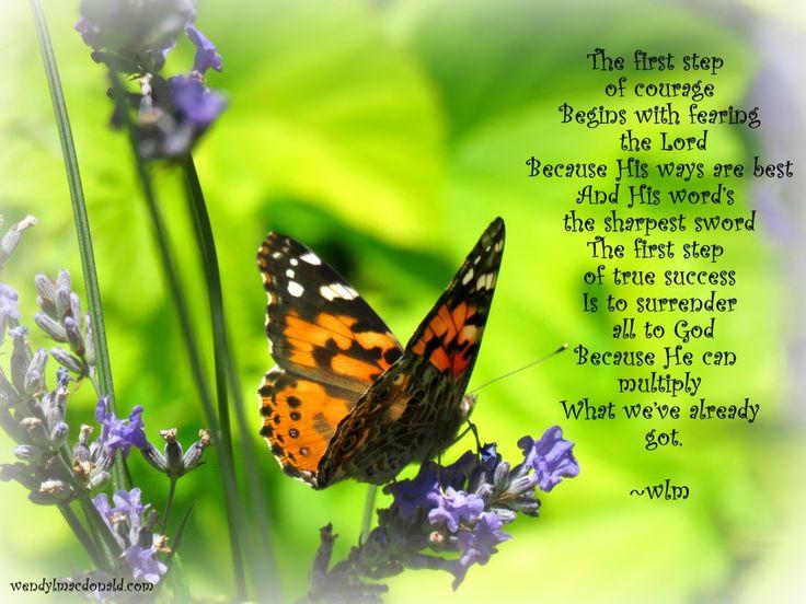 Multipication is one of God's fortes #memoir Butterflies at Filberg Park wendylmacdonald.com