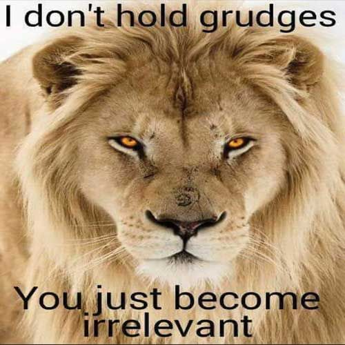 Roar, thats lion for Yep!!!