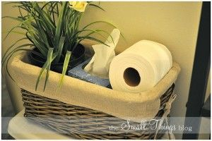Bathroom: Behind the toilet basket; holds the basics.