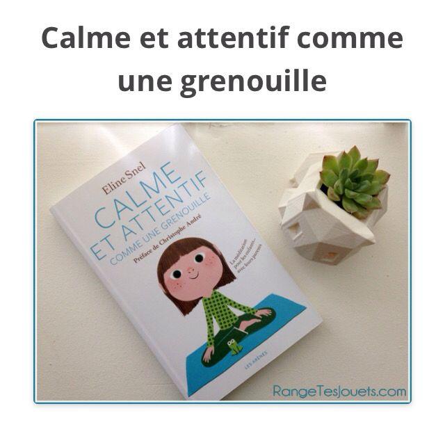 Calme et attentif comme une grenouille - Rangetesjouets.com