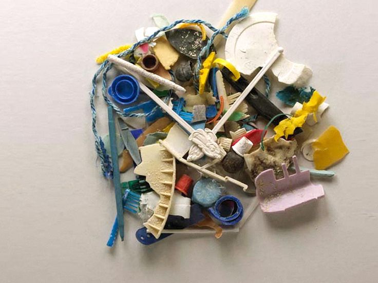 Dianna Cohen: Tough truths about plastic pollution via TED