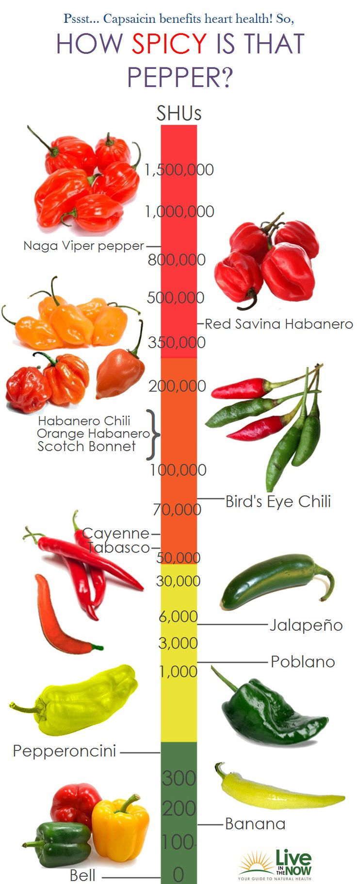 Considering that pepper has many great properties, let's see how spicy are types of peppers. For example Naga Viper Pepper is the most spicy pepper in this classification, while Red Savino Soda Habanero, Habanero Chili, Orange Habanero and Scotch Bonnet are lesser.