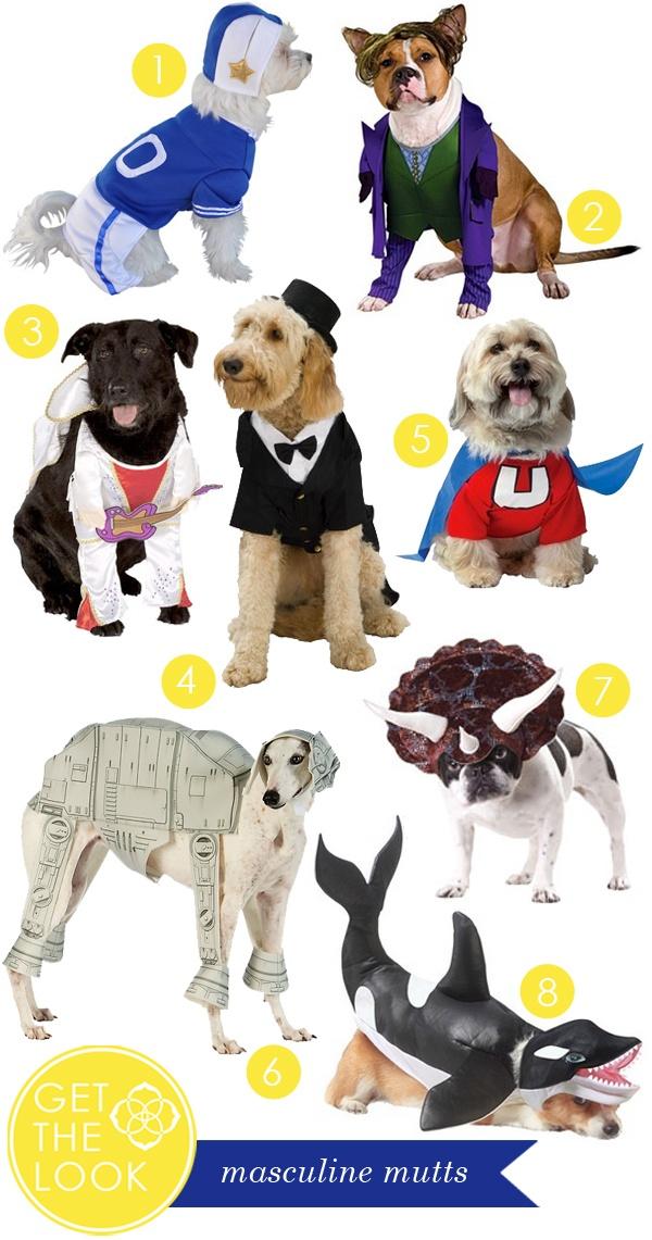 38 Best Pet Doors For Dogs Images On Pinterest Pet Door Doggies