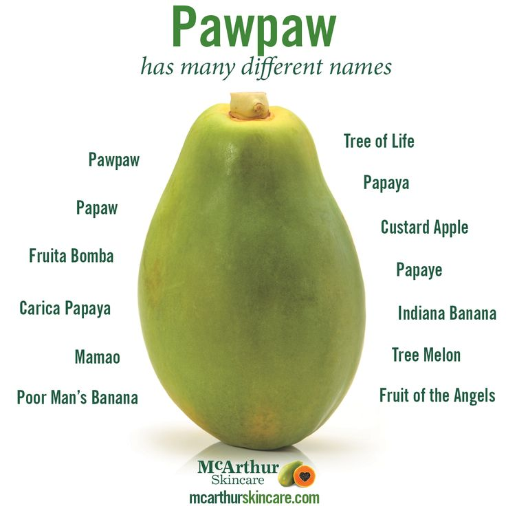 The Pawpaw is known by many different names and references throughout the world.  Maybe you have heard of some of these terms?  Pawpaw, Fruita Bomba, Carica Papaya, Mamao, Poor Man's Banana, Tree of Life, Papaya, Custard Apple, Papaye, Indiana Banana, Tree Melon, Fruit of the Angels, Papaw.  Interested to learn more about the benefits of the humble pawpaw? Click here: http://mcarthurskincare.com/about-pawpaw/  #mcarthurskincare #pawpaw #papaya