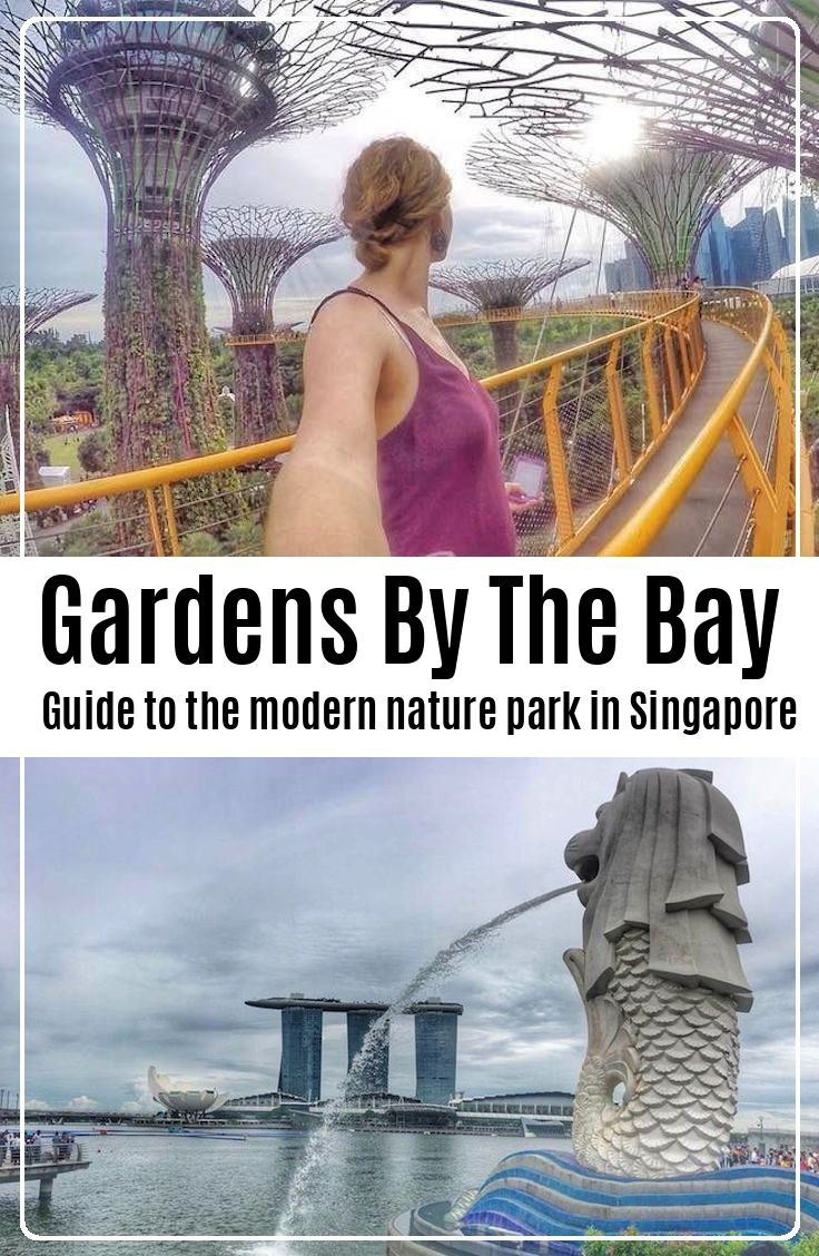 Complete guide to the modern nature park in Singapore