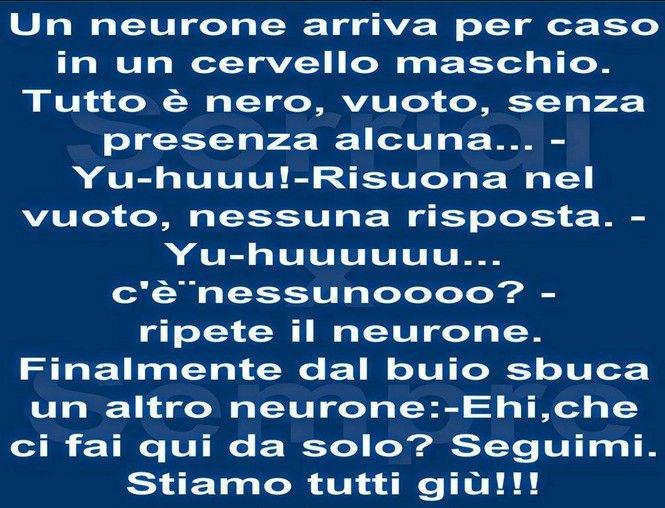 Neuroni maschili