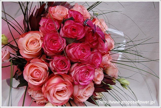 花束 / rose bouquet pink