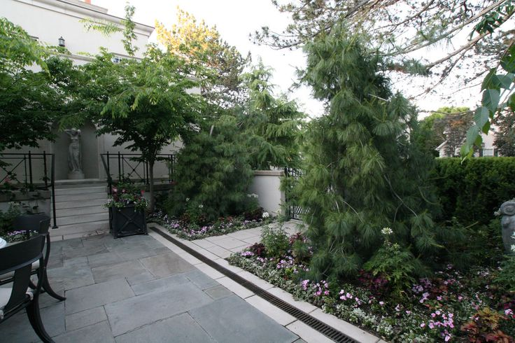 Modern garden design ideas are a process of designing and creating new ideas and plans for a perfect garden.