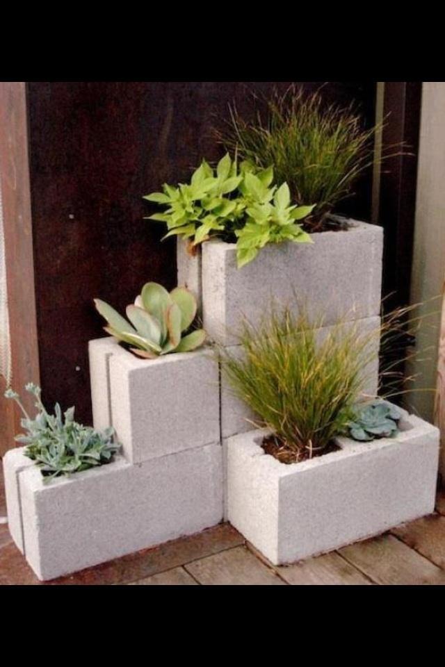 Plantas en ladrillo de cemento