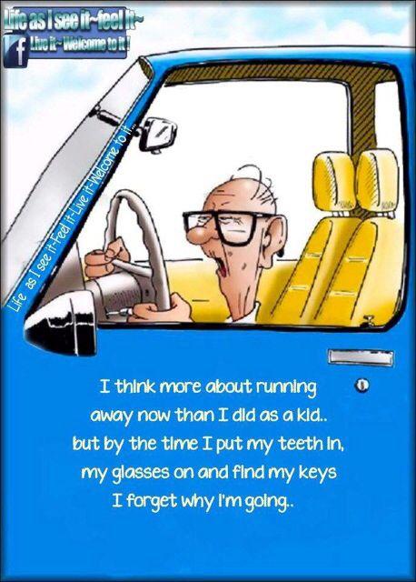 senior humor funny cartoons jokes citizen age quotes per sayings cartoon birthday aging hilarious chattycrone