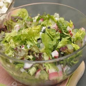 Die Blattsalate mundgerecht zerteilen. Fenchel und Radieschen in feine Streifen schneiden. Frühlingszwiebeln in Ringe teilen. Tomaten halbieren....