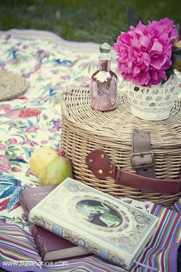 Picnic and Books