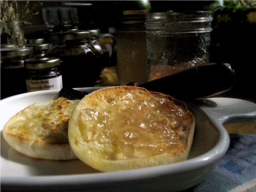 """Queen Anne's Lace Flower Jelly. A delightful jelly from that pretty white flower--""""tastes like a light floral lemonade"""": Lace Flowers, Flowers Jelly, Foraging Recipes, Recipes Boxes, Recipe Box, Lace Jelly, Queen Anne Lace, Pixie Pockets, Queen Annes Lace"""