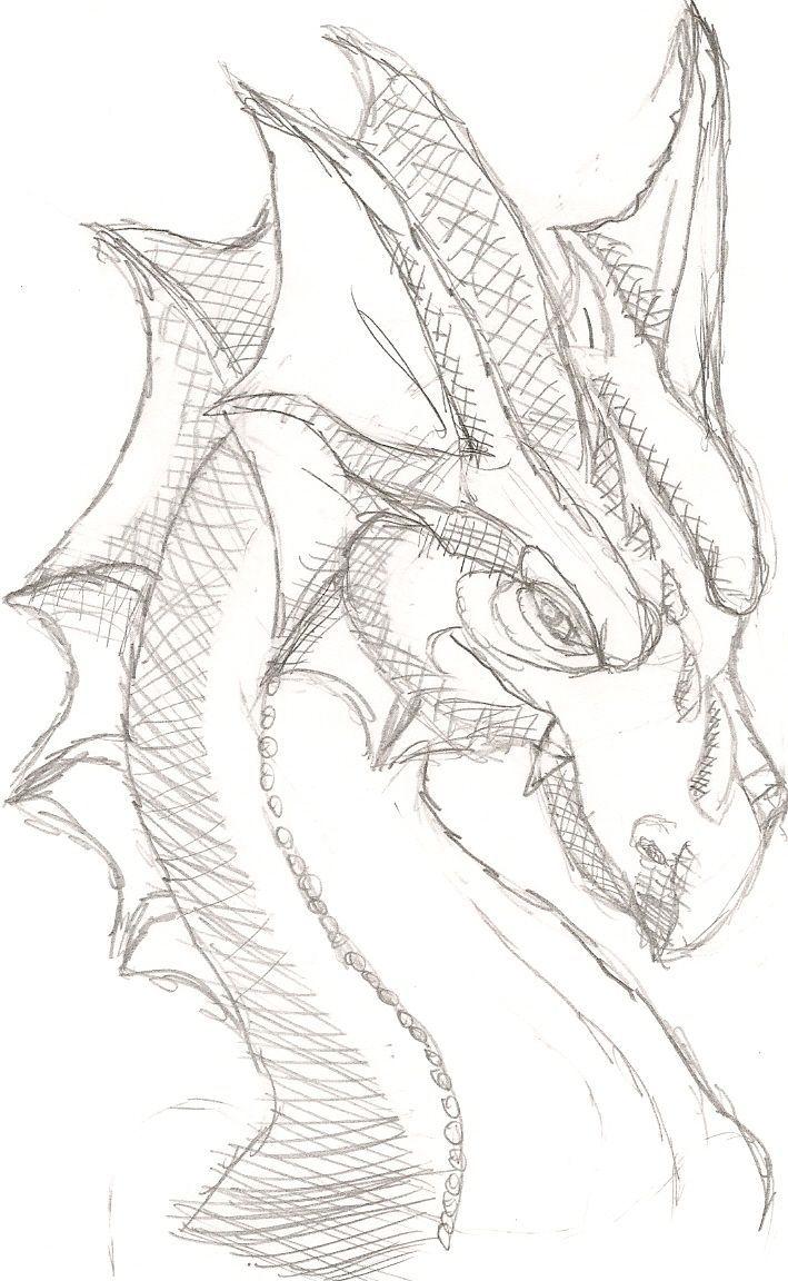 Drachenkopf 2 von ~ Lil-Wolf-Girl auf deviantART  #deviantart #drachenkopf #Löw…