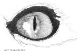 Image result for easy sketches of eyes