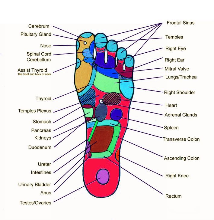 Pressure Points on your left foot | Cool Stuff | Pinterest ...