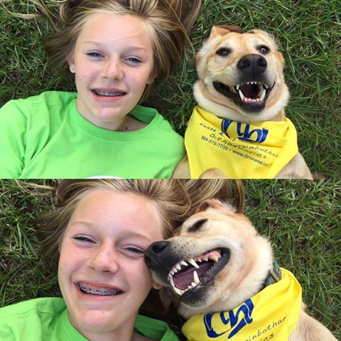 18 best dog days of summer images on pinterest dog days main is the best way into the dog days of summer get stuck into the smile philosophy nease and higginbotham orthodontics 2455 e main street spartanburg sc solutioingenieria Images