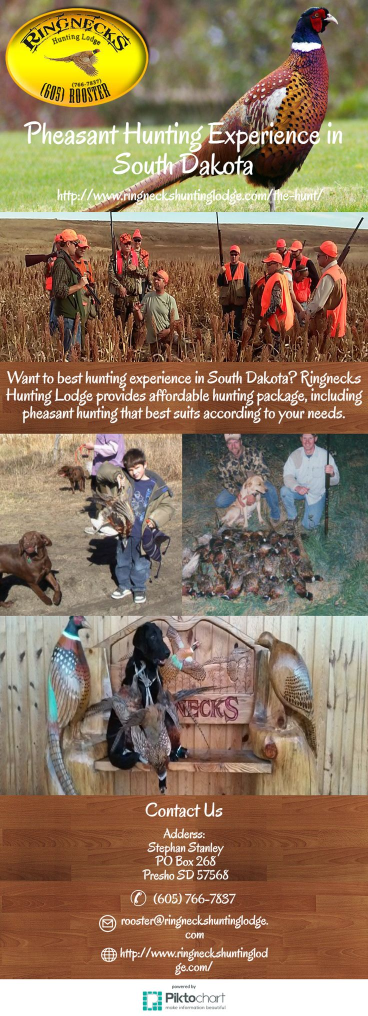 Want to best hunting experience in South Dakota? Ringnecks Hunting Lodge provides affordable hunting package, including pheasant hunting that best suits according to your needs.