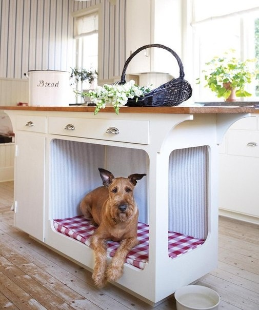 Aw, a place for doggie in the kitchen!