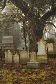 Oakdale Cemetery, Wilmington, NC I have seen this cemetery its very cool.