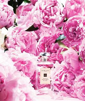 Peony and Blush Suede Jo Malone perfume - a new fragrance for women 2013