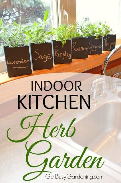 I love growing herbs indoors to use in my recipes year round. Here are some cute container ideas for your indoor kitchen herb garden!