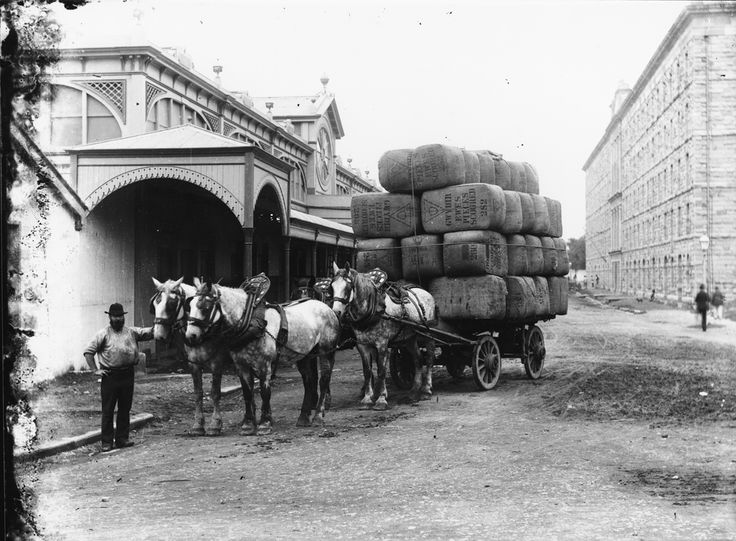 australian history - Google Search Carting wool bales