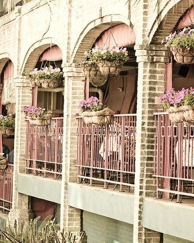 The Bistro, Paris, France: Pink Flowers, Window View, Beautiful Balconies, Pretty Pink, Gardens Design Ideas, Modern Gardens Design, Pretty Flowers, Flowers Boxes, Paris Hotels