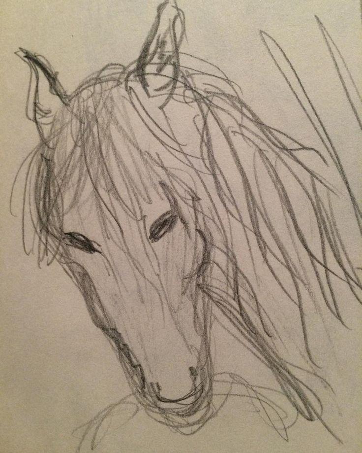 Quick sketch - just for fun - because i love animals. Copyright www.anne-mette.com  #quicksketch #sketch #horse #drawing #drawingoftheday #artgalleries #artlover #loveart #danishartist #kunstner #tegning #hest #cheval #hestehoved #email #pinterest #pin #tegning #kunst@anne-mette.com