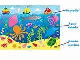Proyecto el mar en infantil