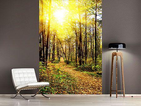 Fototapeten Wohnzimmer Günstig Online Kaufen
