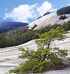 Stone Mountain State Park, NC- hope we can camp there again, the kids, the dog, Rob, and me