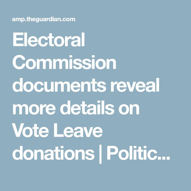 Electoral Commission documents reveal more details on Vote Leave donations | Politics | The Guardian