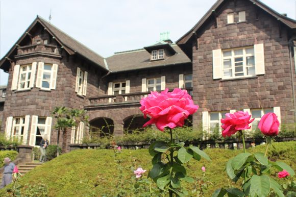 roses in Kyu-Furukawa gardens in Tokyo【公園へいこう♪】乙女系バラ園「旧古河庭園」は今バラが最盛期☆ 洋館の見学もおすすめですぞ