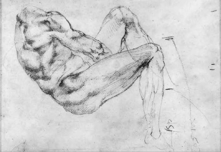 Michelangelo Buonarroti - Figura maschile con busto reclinato in vista laterale destra