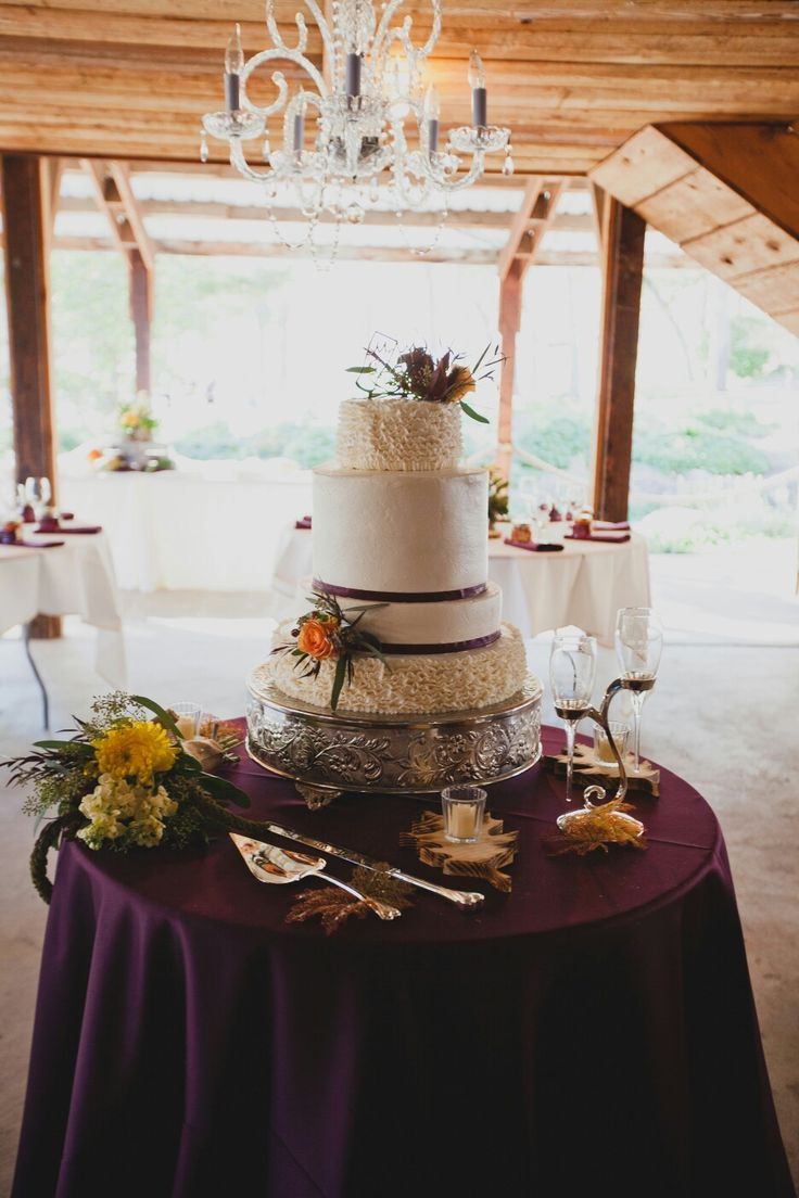 Wedding cake. Plum rustic fall cake. Made by yours truly