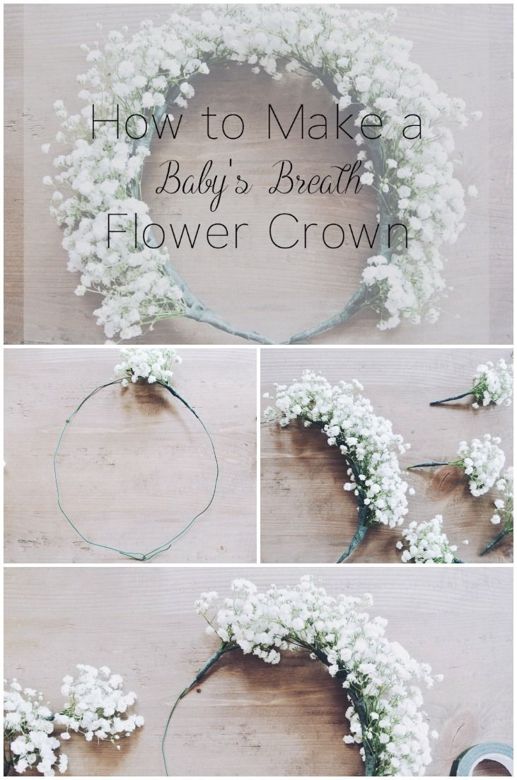 How To Make A Baby S Breath Flower Crown With Images Baby Breath Flower Crown Babys Breath Flowers Diy Flower Crown
