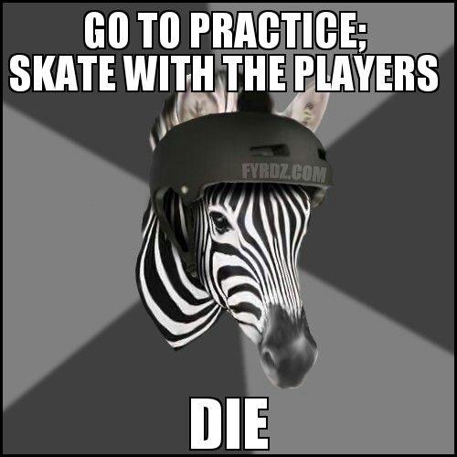 FYeah, Roller Derby Zebra